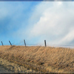 Road Side Fence, Norfolk, Nebraska