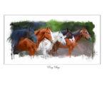 PonyBoys